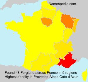 Familiennamen Forgione - France