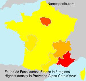 Familiennamen Fossi - France