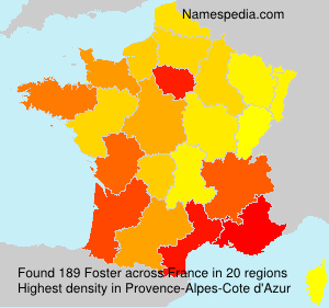Surname Foster in France
