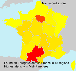 Surname Fourgous in France