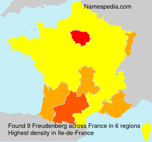 Surname Freudenberg in France