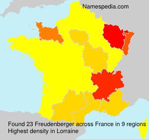 Familiennamen Freudenberger - France