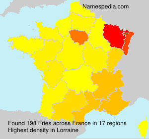 Surname Fries in France