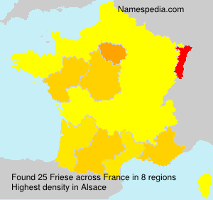 Surname Friese in France