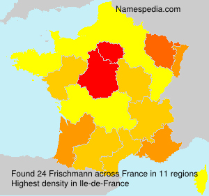 Surname Frischmann in France