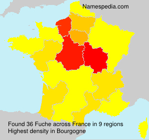 Surname Fuche in France