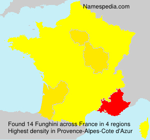 Surname Funghini in France