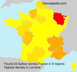 Surname Gafour in France