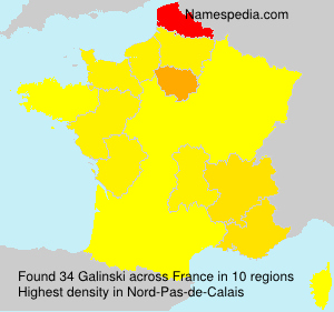 Surname Galinski in France