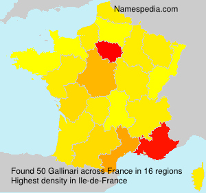 Surname Gallinari in France