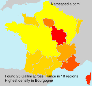 Surname Gallini in France
