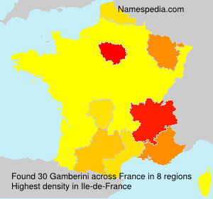 Surname Gamberini in France