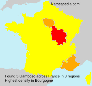 Surname Gamboso in France