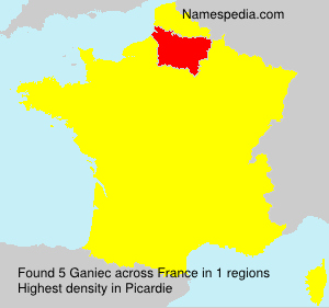 Surname Ganiec in France