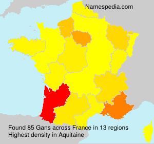 Gans - France