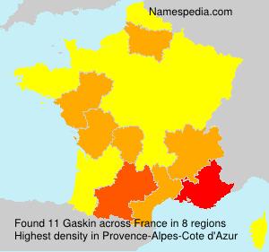 Surname Gaskin in France