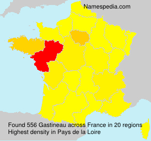 Surname Gastineau in France