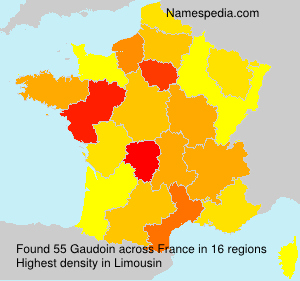 Surname Gaudoin in France