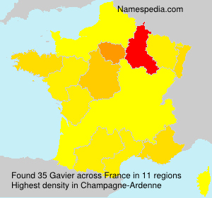 Surname Gavier in France