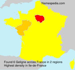 Familiennamen Geligne - France