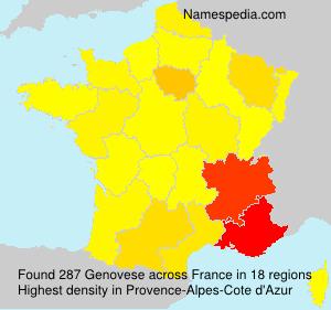 Familiennamen Genovese - France