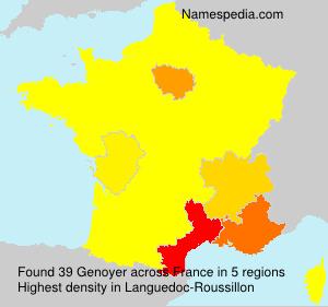 Surname Genoyer in France
