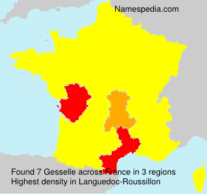 Surname Gesselle in France