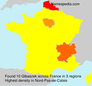 Surname Gibaszek in France