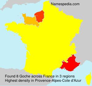 Surname Goche in France
