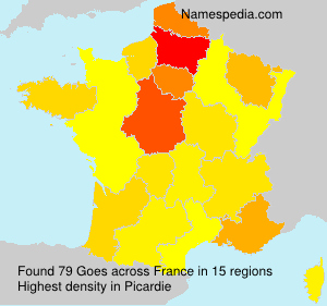 Surname Goes in France