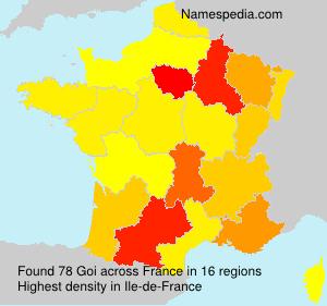 Surname Goi in France