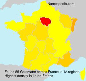 Familiennamen Goldmann - France