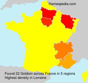 Surname Goldoni in France
