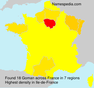 Surname Goman in France