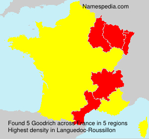 Surname Goodrich in France