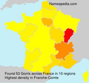 Surname Gorris in France