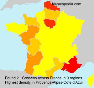 Surname Gossens in France