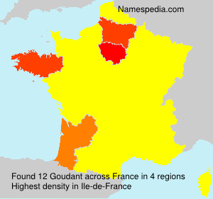 Surname Goudant in France