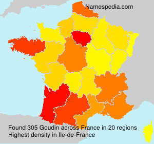 Surname Goudin in France