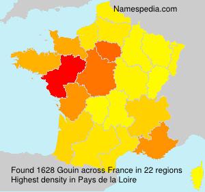Familiennamen Gouin - France