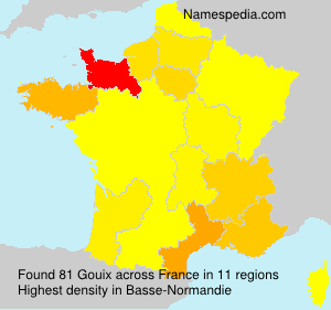 Surname Gouix in France