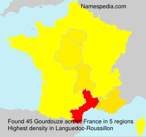 Surname Gourdouze in France