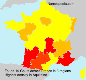 Surname Gouts in France
