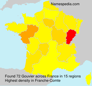 Surname Gouvier in France