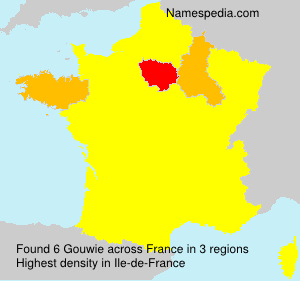 Surname Gouwie in France