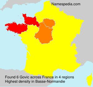 Surname Govic in France