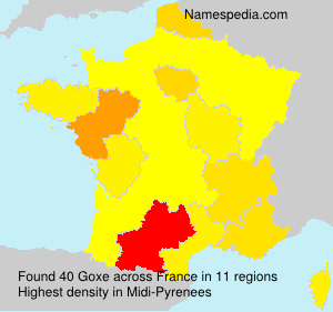 Surname Goxe in France