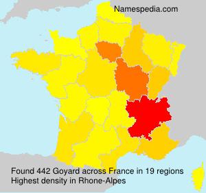 Surname Goyard in France