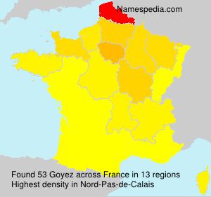 Surname Goyez in France