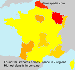 Surname Grabarek in France